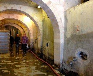 Kocabag winery interior
