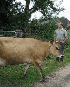 Jan mit Kuh