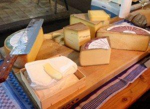 cheese HCT 17