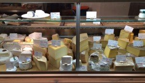 Blomeyer cheese counter