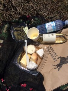 Cowgirl picnic2