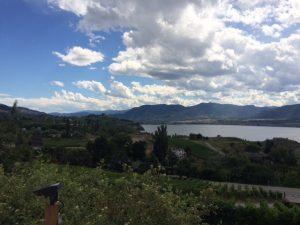 view from Naramata bench