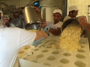 scooping-vacherin-curd